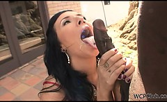 Sexy brunette gets a big black cock in her pussy